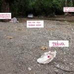 Σκουπίδια από πάνες μιας χρήσεως στο φυσικό περιβάλλον!